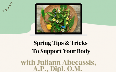 Zoom Class Replay – Spring Tips & Tricks to Support Your Body!
